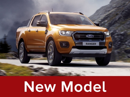 FORD RANGER Pick Up Double Cab Wildtrak 2.0 EcoBlue 213 Auto